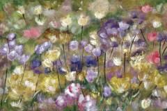 ANGIE-CAMPOY-Campo-de-tulipanes