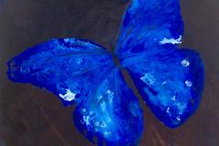 ANGIE-CAMPOY-Morfo-azul