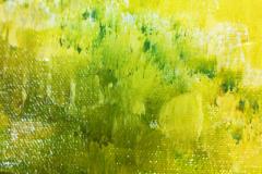 ANGIE-CAMPOY-Naturaleza-3